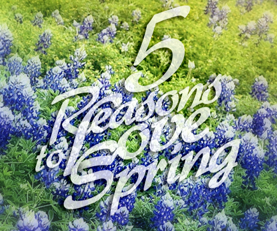 5 Reasons To Love Spring