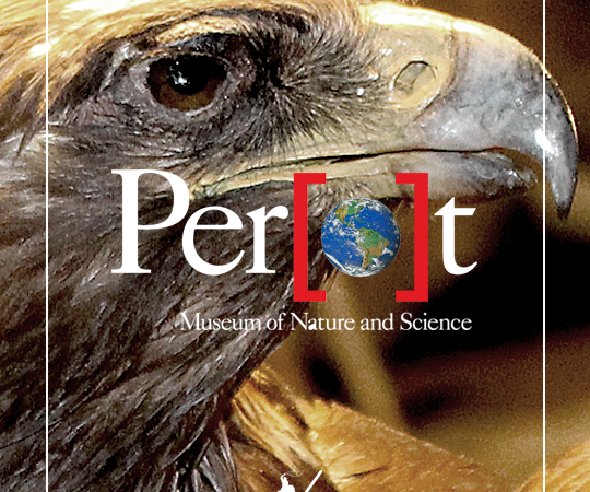 Perot Museum + Giveaway