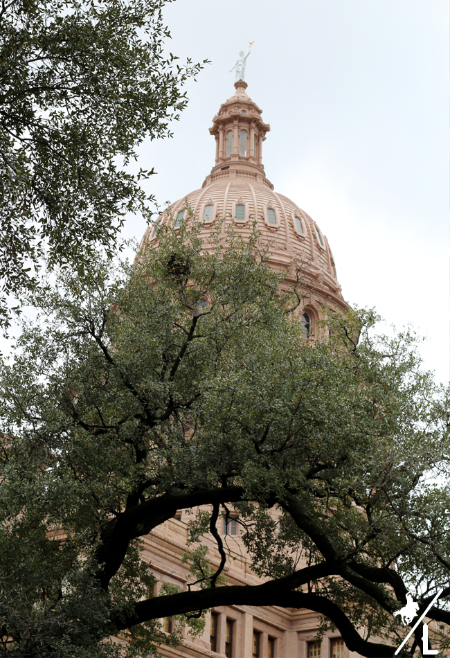 Visiting the Texas State Capitol