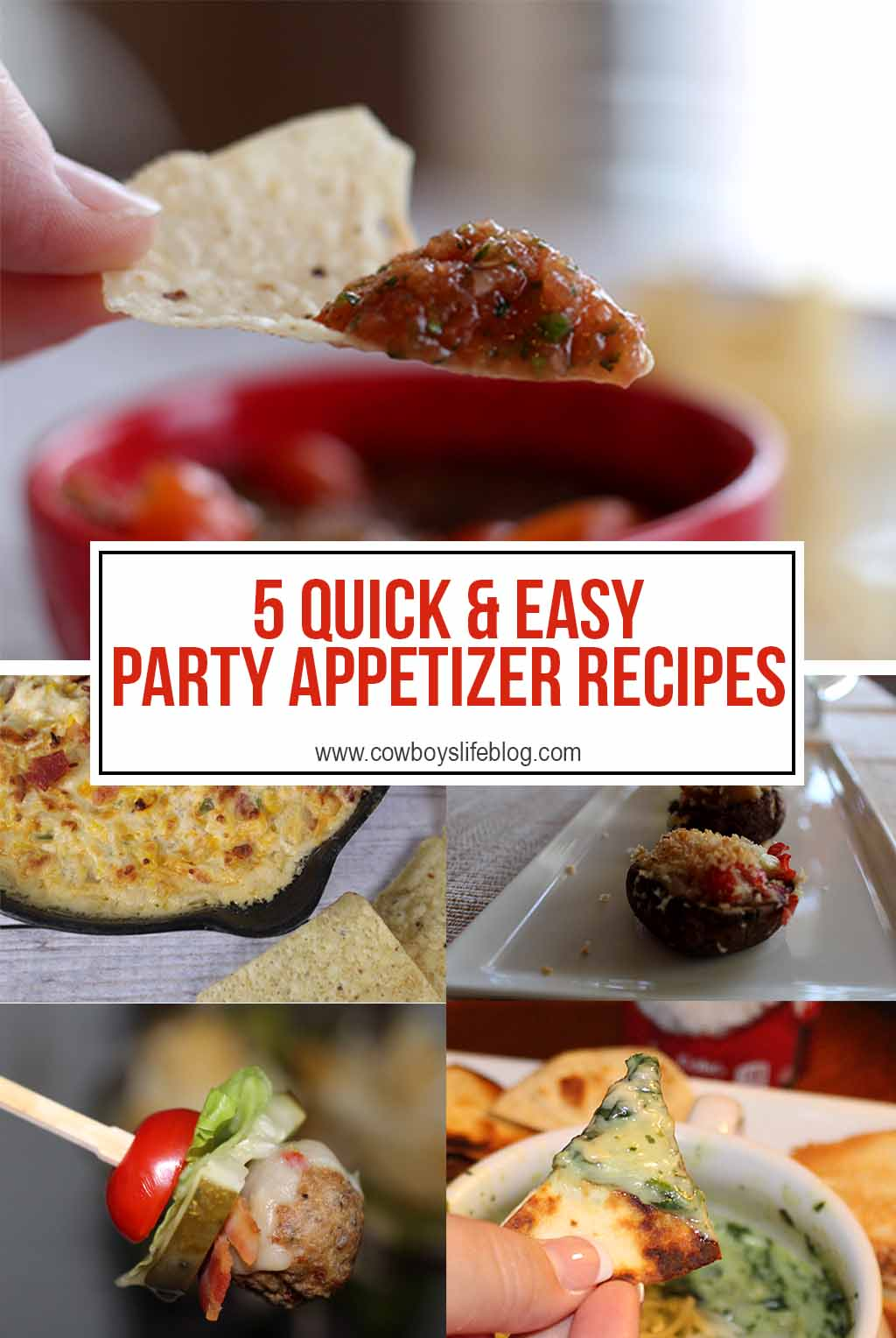 5 Quick & Easy Party Appetizer Recipes