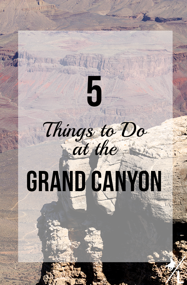 5 Things To Do On A Day Trip to the Grand Canyon