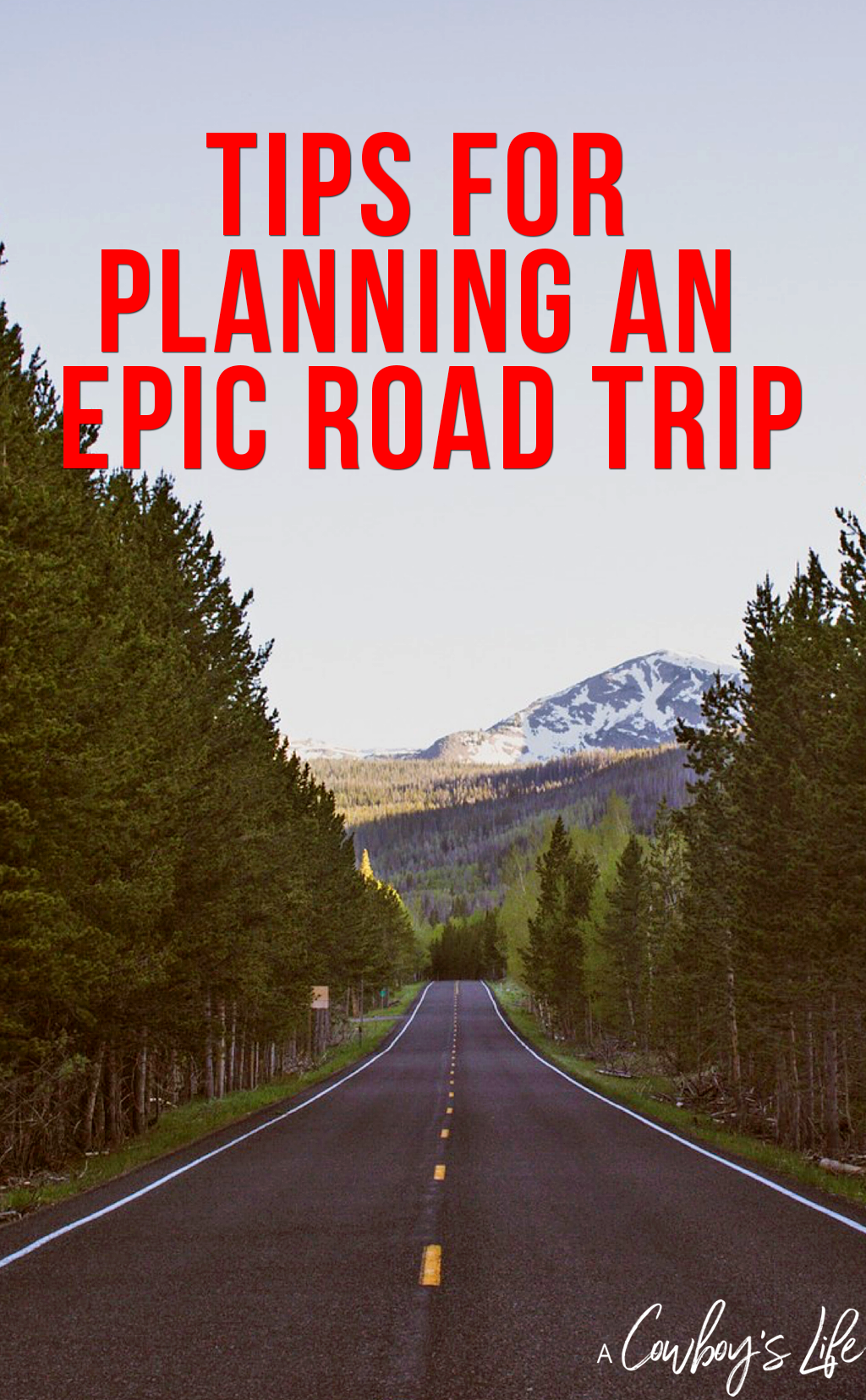 Check out these tips for planning an epic road trip! #traveltips #vacationplanning #travel
