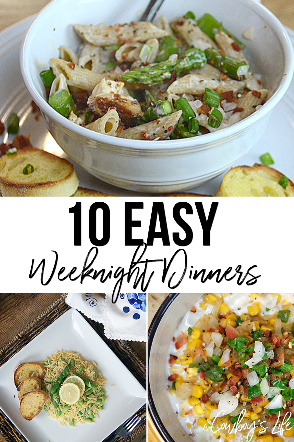 10 easy and quick weeknight dinner recipes