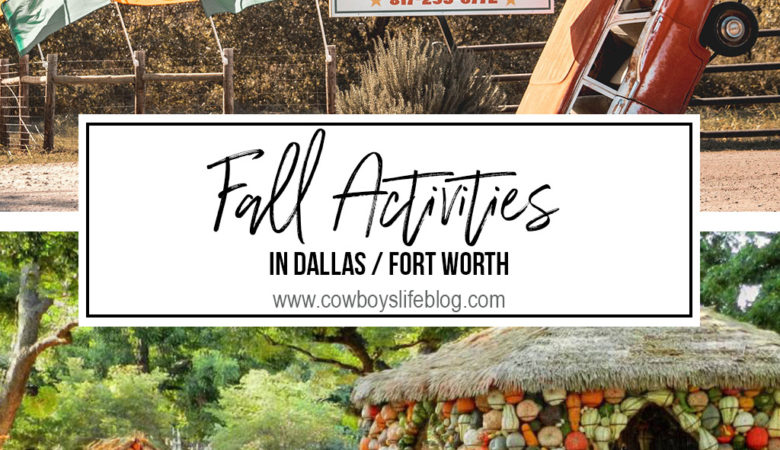 Fall activities in Dallas / Fort Worth