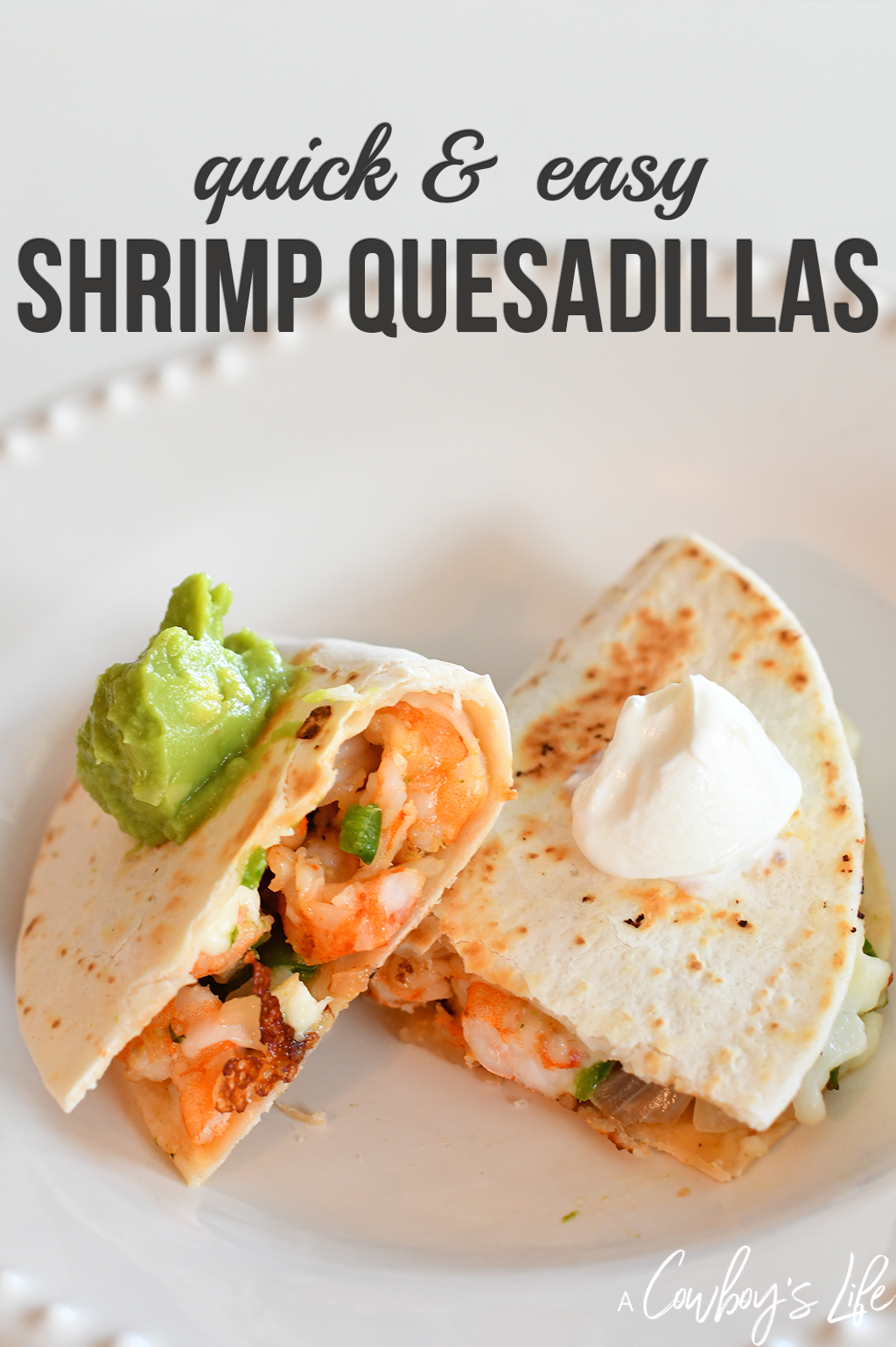 Shrimp Quesadilla Recipe