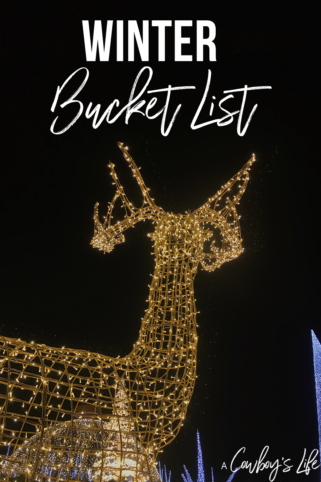 family winter bucket list