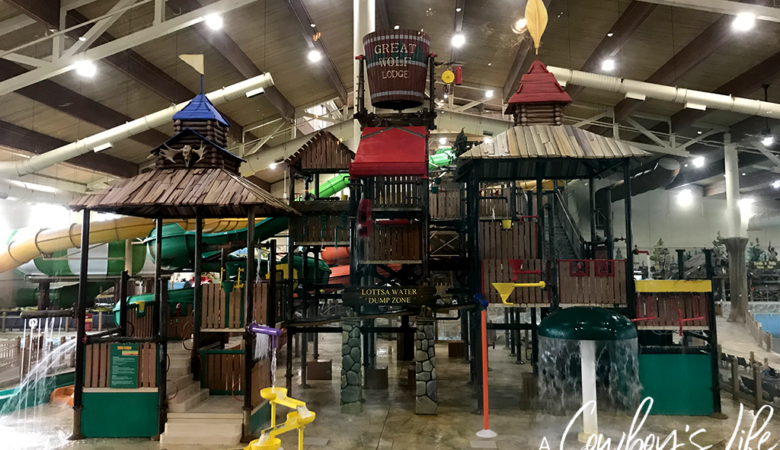 The Ultimate Guide to Great Wolf Lodge