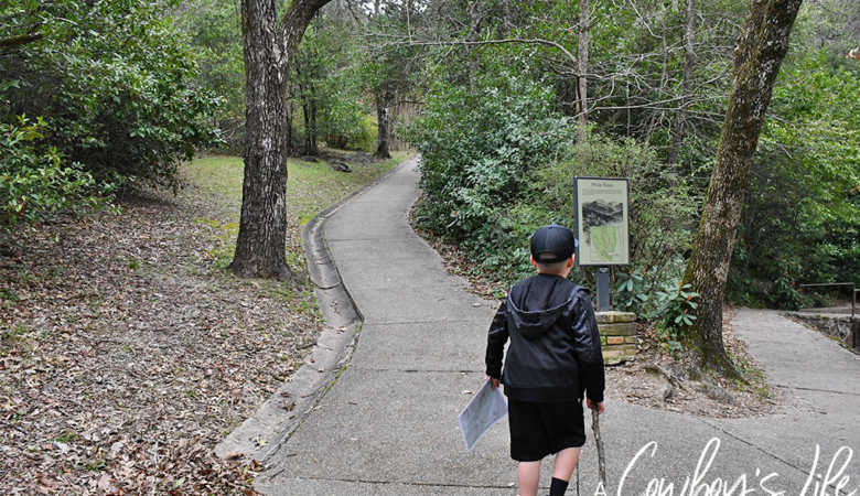Best Hikes in Hot Springs, Arkansas #hotsprings #arkansas #hikingtrails