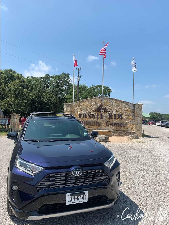 Fossil Rim a Texas Safari Guide | Fossil Rim | Glen Rose | Texas Adventures | Travel Texas | Texas Safari #fossilrim #glenrose #familytravel
