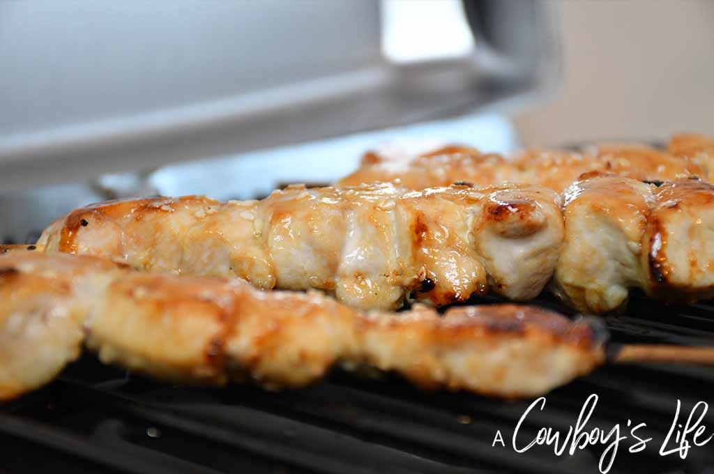 Grilled Korean Chicken Kabobs