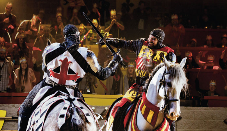 Medieval Times Black Friday Deal