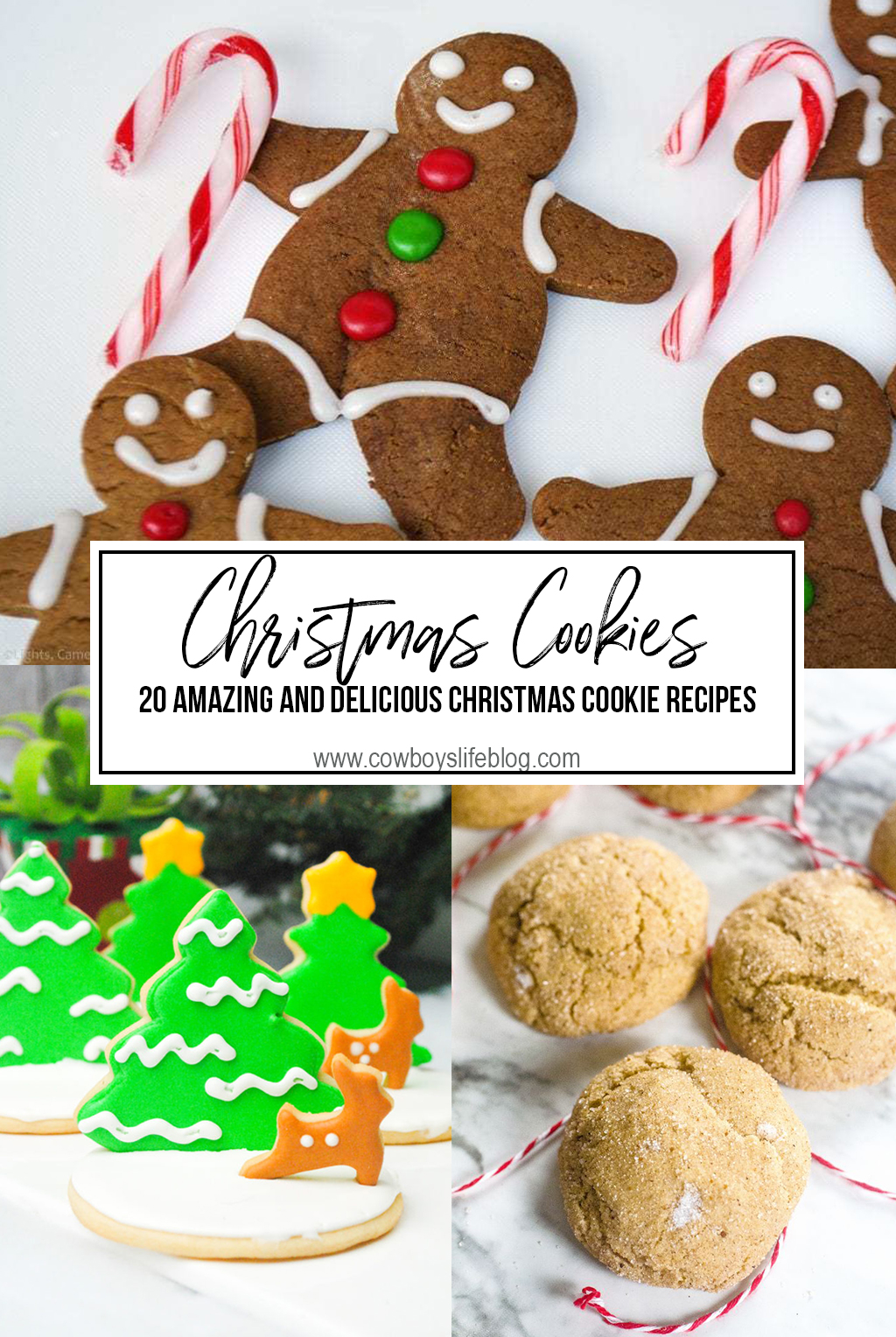 20 Amazing Christmas Cookie Recipes