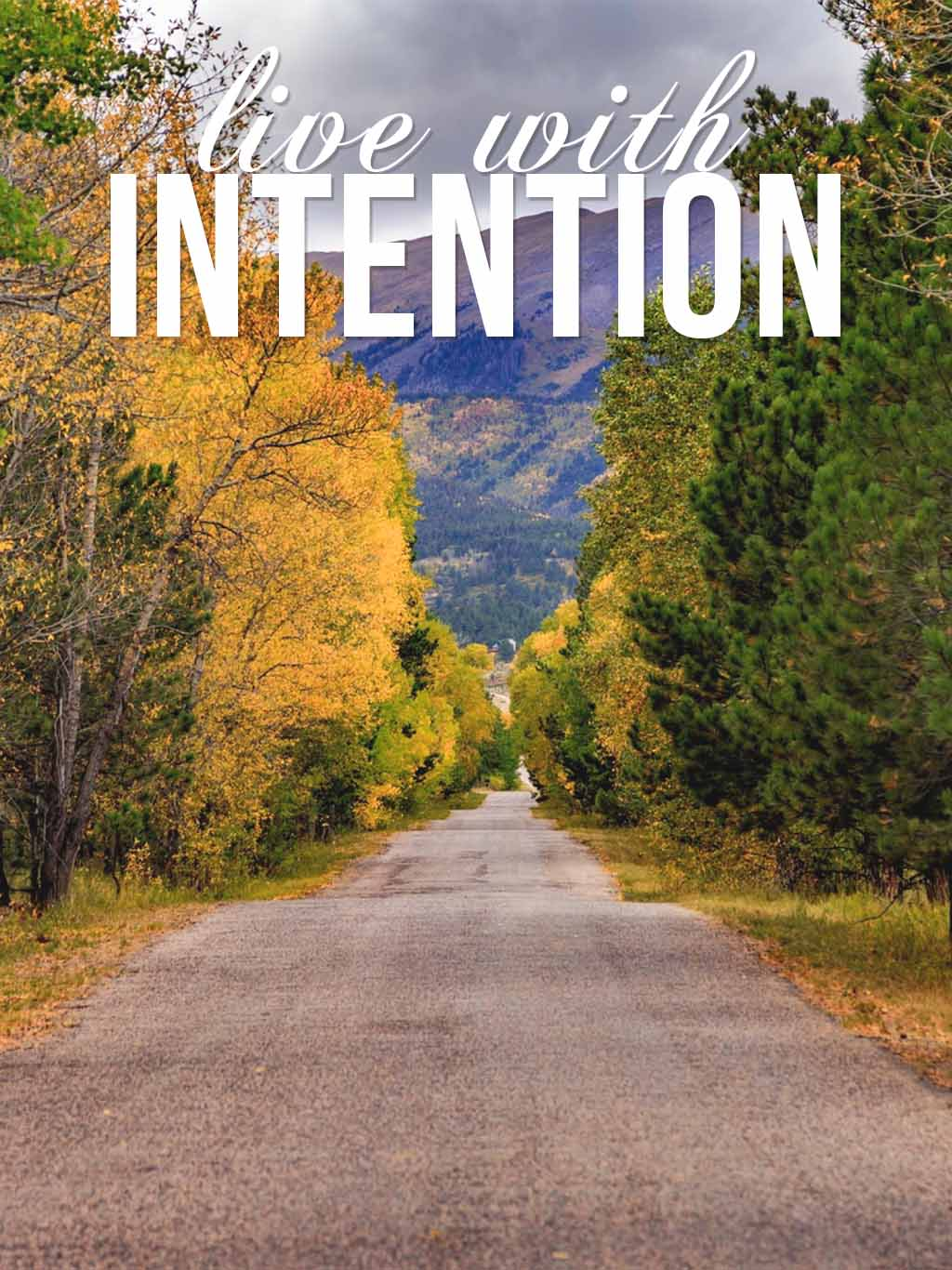 Word of the Year - Intentional