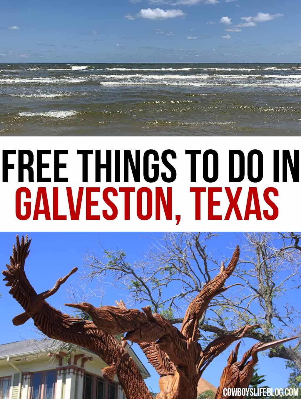 8 Free Things to do in Galveston, Texas