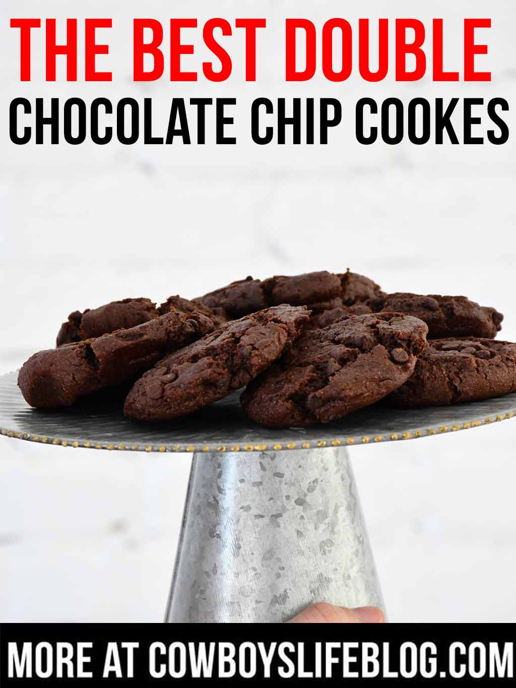 The Best Double Chocolate Chip Cookies