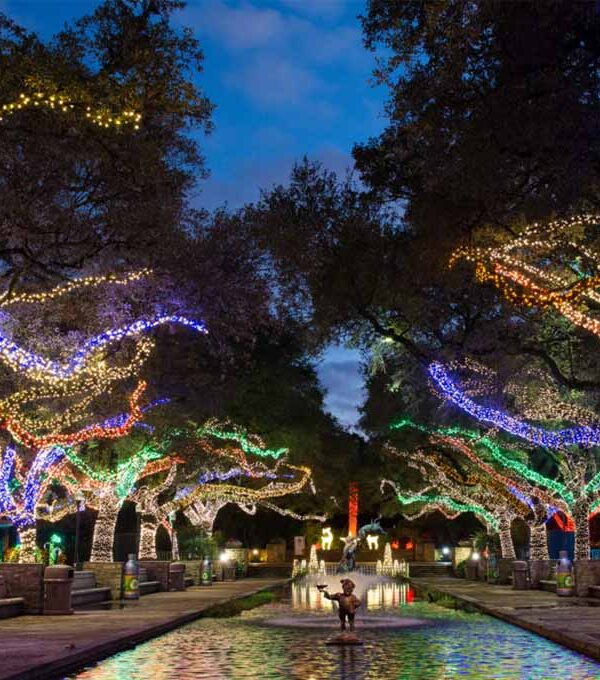 Best Christmas Light Displays in Katy and Houston (to visit in 2021)