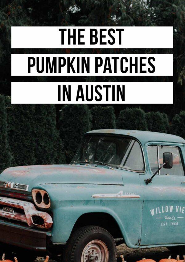 The Best Pumpkin Patches in Austin (2021)